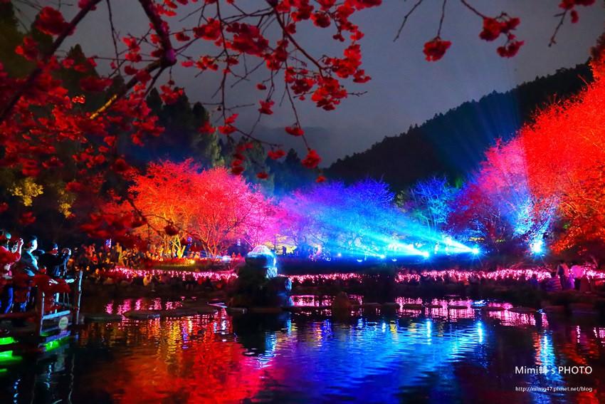 九族櫻花祭56.JPG