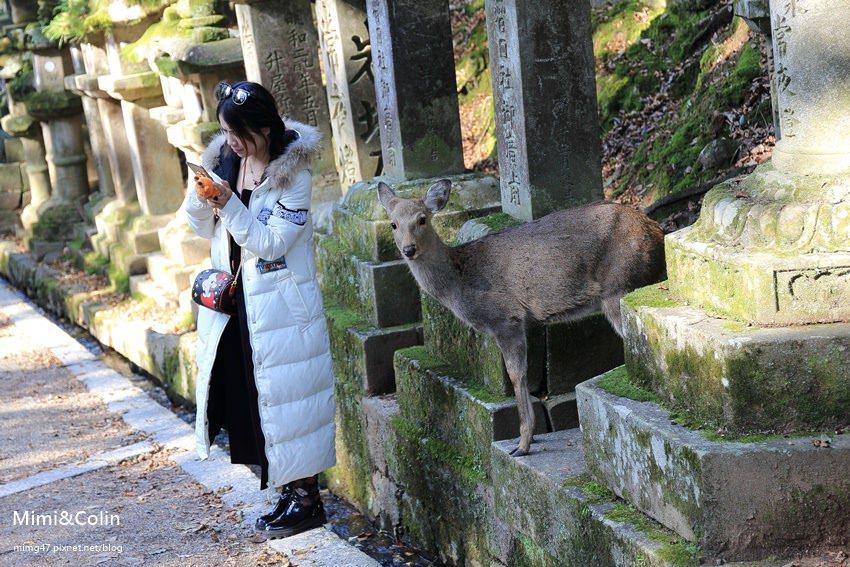 奈良東大寺-48.jpg