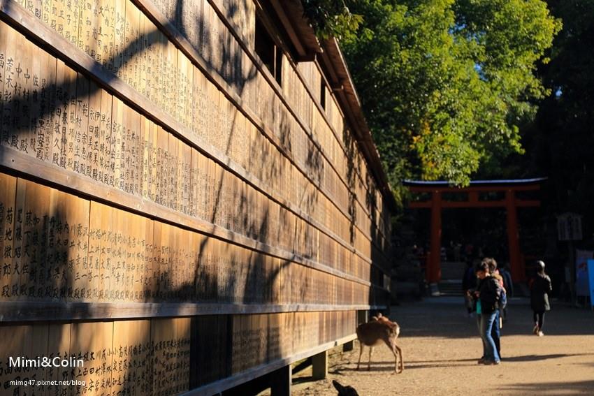 奈良東大寺-39.jpg