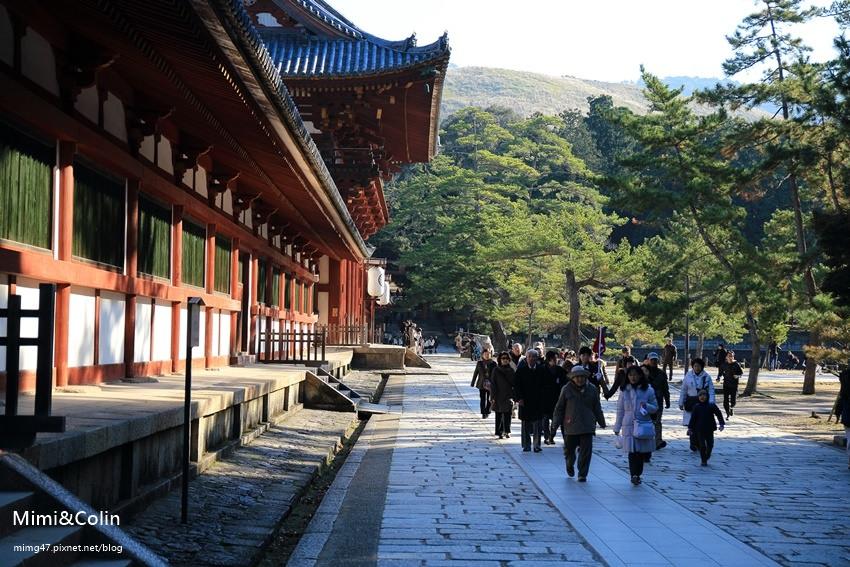 奈良東大寺-20.jpg