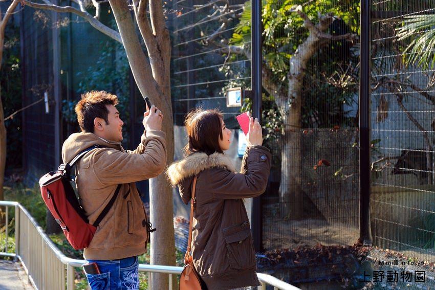 上野動物園-34.jpg