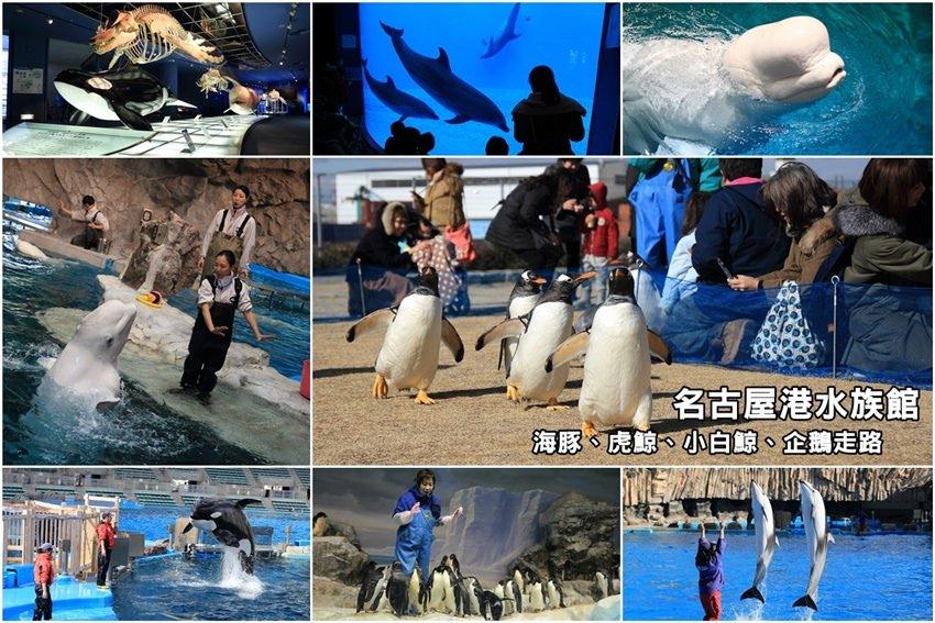 【名古屋景點】名古屋港水族館:海豚、虎鯨、小白鯨超可愛,看企鵝走路好療癒。大推必遊,玩整天也沒問題。