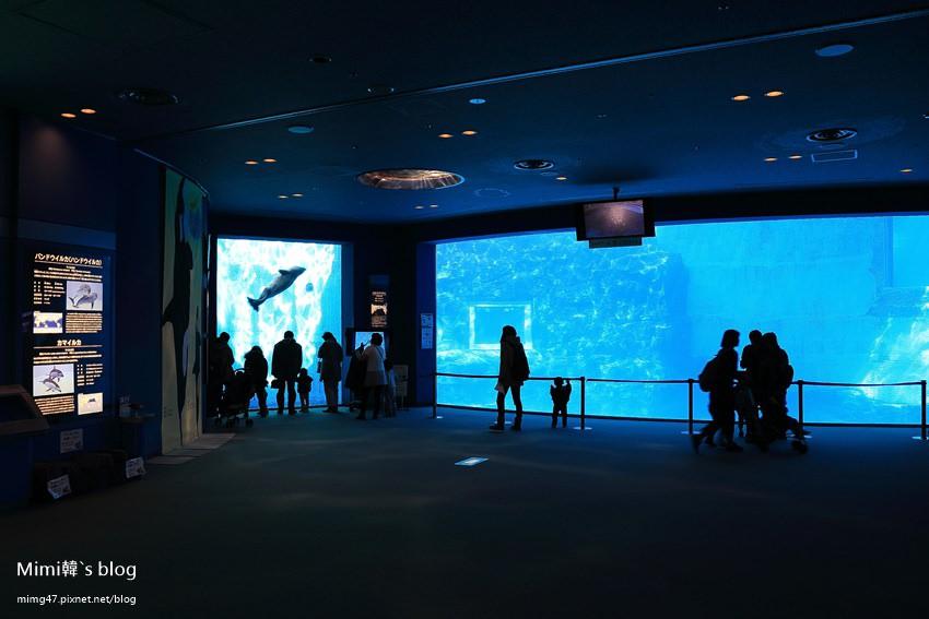 名古屋水族館-13.jpg
